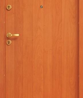 Drzwi wejściowe Pol-Skone CERBER PLUS